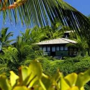 Villa dans une cocoterais de Bahia