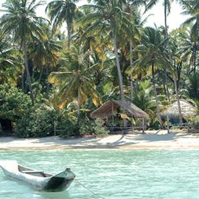 Idées voyages : Bahia et ses environs
