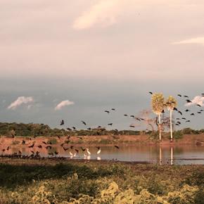 Ce paradis naturel vous surprendra. De longues balades à cheval vous permettrons de découvrir un lieu hors du temps.