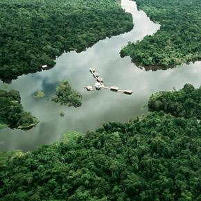 Les voyages en Amazonie sont plus difficiles à organiser.  Il est donc conseillé de choisir un voyage sur mesure pour découvrir ce joyau de la planète.