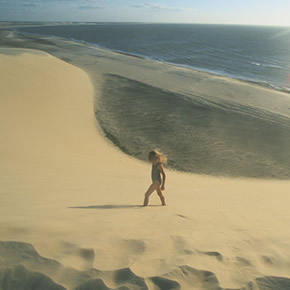 Le Brésil est composé de nombreux paysages hors du commun dont le Parc National de Jericoacoara fait parti. Ce parc est une aire protégée de 200km².