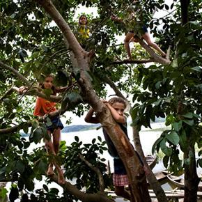 Tout au long de votre voyage en Amazonie, profitez des promenades en pirogues, de baignades dans le fleuve et de partage de la cuisine amazonienne